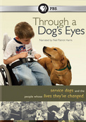 Click to view: THROUGH A DOG'S EYES - DVD Movie!