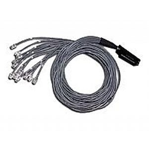 C2G Telco 180 To Hydra - network cable - 10 ft