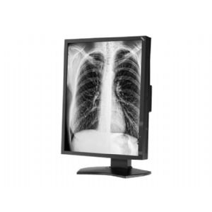 NEC MD211G3 - LCD monitor - 3MP - grayscale
