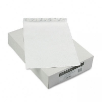 ENVELOPE,TYVK,10X15,100BX - More Info