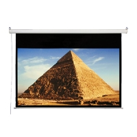 Accuscreen 106 Electric Projector Screen