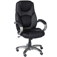 Z-Line ZL5001-01ECU Executive Leather Chair - More Info