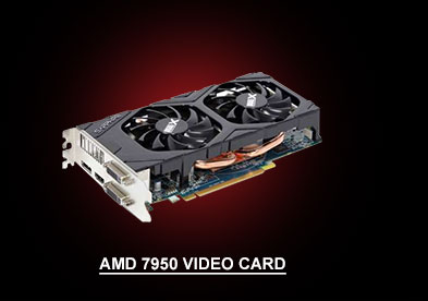 AMD 7950 Video Card, click to see products