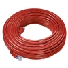 Alternate view 2 for Raygo 75ft Cat5e 350MHz Snagless Patch Cable Red
