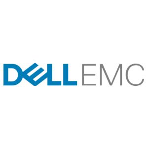 EMC Flash Drive PowerPack - solid state drive