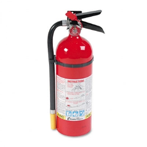 Pro Line Dry Chemical Fire Extinguisher ABC