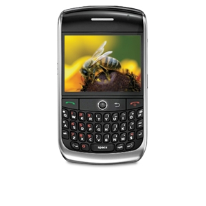 Blackberry 8900 Unlocked GSM Cell Phone (Refurb)