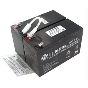 Battery Biz Inc B-6810 Battery