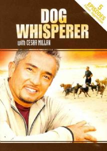 DOG WHISPERER WITH CESAR MILLAN:AGGRE - DVD Movie