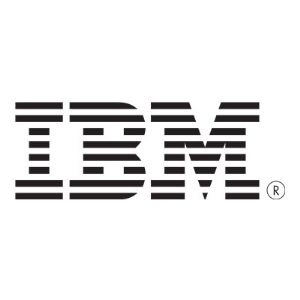 IBM Enterprise Value - solid state drive - 480 GB