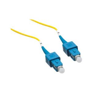 Axiom network cable - 98 ft