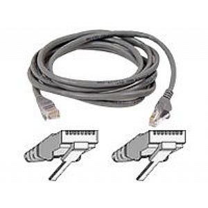 Belkin patch cable - 100 ft - gray