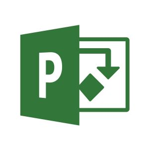 Microsoft Project Professional 2016 - box pack