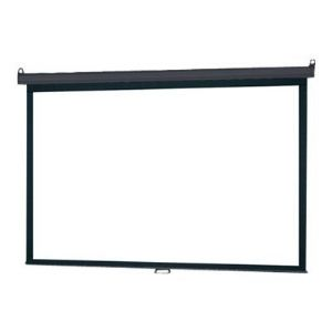 InFocus Manual Pull Down Screen - projection
