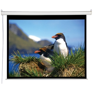 """AccuScreen 100"""" Electric Projector Screen"""