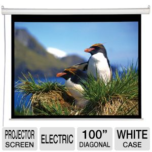 "AccuScreen 100"" Electric Projector Screen"