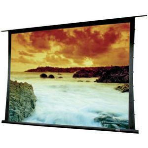 Draper Access Series V Electrol Projection Screen