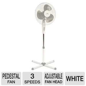 Famous Brand Lakewood Oscillating Stand Fan