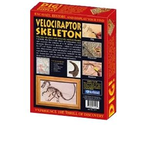kristal DIG! &amp; DISCOVER Velociraptor Skeleton Lear