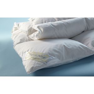 Queen down Mattress Pad