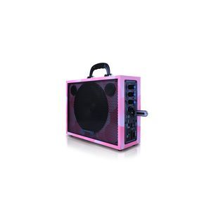 Technical Pro 6'' Portable PA System