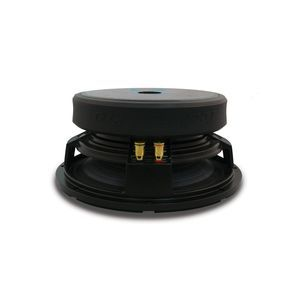 Technical Pro 6.5'' Raw Subwoofer