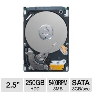 Seagate Momentus 5400.6 250GB Laptop Hard Drive