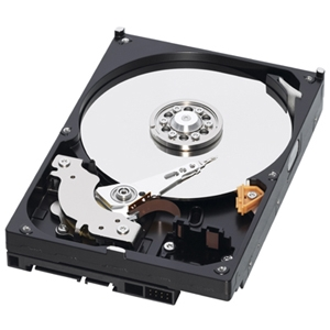 Western Digital Caviar Blue 320GB Hard Drive