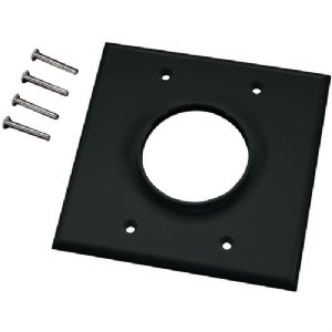 DOUBLE-GANG WIREPORT(TM) WALL PLATE (BLA