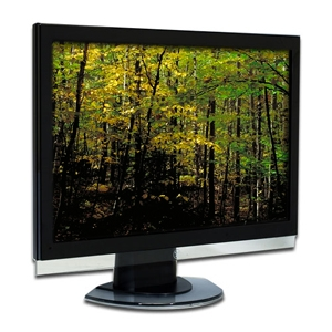 "Westinghouse L2410NM 24"" LCD"