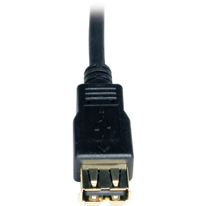 6FT USB AA EXTENSION CABLE GOLD
