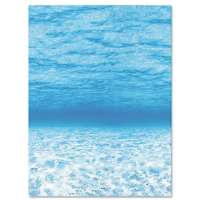 Fadeless Designs Bulletin Board Paper, Under the Sea, 50 ft x 48&quot;