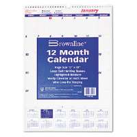 One Month Per Page Twin Wirebound Wall Calendar, 12 x 17, 2013