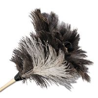 Professional Ostrich Feather Duster, 7&quot; Handle