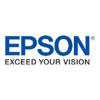 "Epson ELPMBC03 6"" Fixed Extension Column - Mounting component (extension column) for projector - ceiling mountable"
