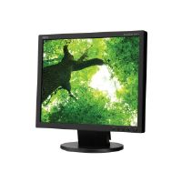 "NEC AccuSync AS172-BK - LED monitor - 17"" (17"" viewable) - 1280 x 1024 - TN - 250 cd/m² - 1000:1 - 5 ms - DVI-D, VGA - black"