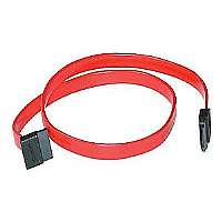 C2G 7-pin 180� to 90� 1-Device Serial ATA Cable-Serial ATA cable-7 pin Serial ATA-7 pin Serial ATA-1 ft-90 degree connector-red-10190