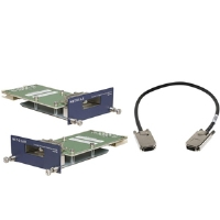 NetGear ProSafe AX742 - Expansion module ( pack of 2 ) - for ProSafe GSM7328S, (AX742)