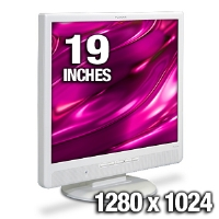 Planar PL1910M 19&quot; LCD Monitor - 1280x1024 SXGA, 1000:1 Contrast Ratio, 5ms, DVI, VGA, with Speakers