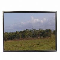 "Mustang 84"" Diagonal 4:3 Fixed Frame Projection Screen"