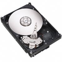 Barracuda 7200.10 hard drives deliver superb performance, efficiency, speed and durability for all your application needs.
