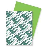 Card Stock Paper, 65 lb., 8-1/2x11, Terra Green