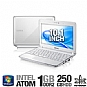 "Samsung N210 Refurbished Netbook - Intel Atom N450 1.66GHz, 1GB DDR2, 250GB HDD, 10.1"" WSVGA, Windows 7 Start, White"