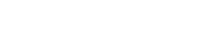 TigerDirect Logo